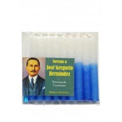 A JOSE GREGORIO HERNANDEZ